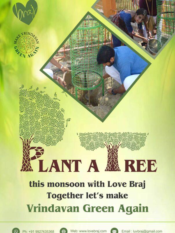 Plant A tree Final (1)